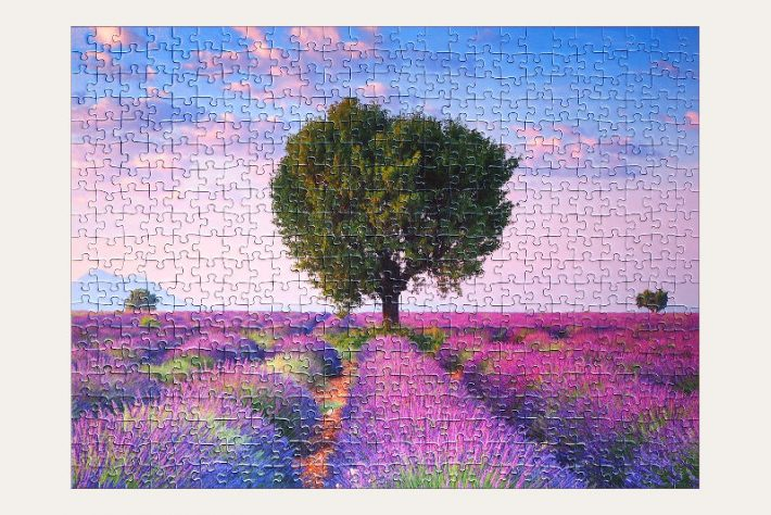 solved jigsaw puzzle